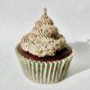Oreo Swirl Cupcake